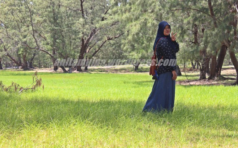 Hijaber in nature