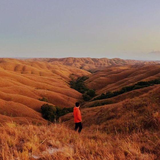 Another colour from Wairinding hills (Foto diambil dari instagram Aris Suhendra @kabutipis)